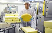 Работа в Швейцарии: Производство Сыра  от 3500 евро